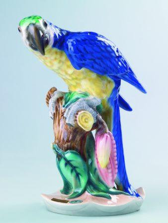 8734 Goldschneider Parrot